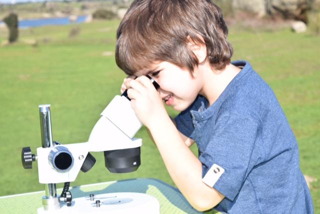 Alquiler de microscopios