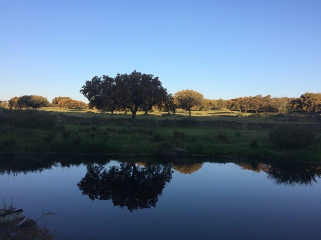 Ahora toca Extremadura, en Otoño, Casa rural en Cáceres especializada en familias con niños