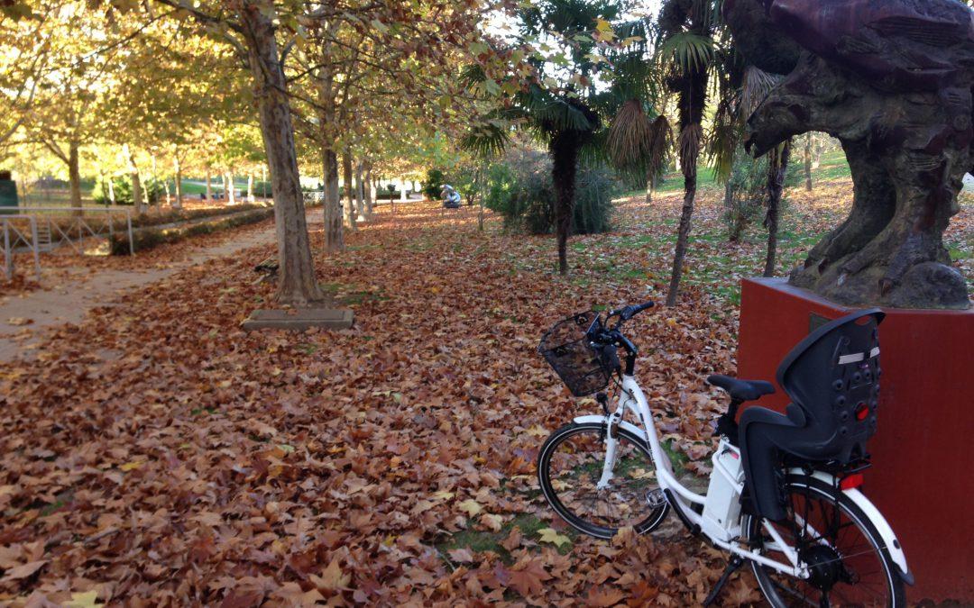 Excelente noticia para turistas que alquilan bicicletas en Cáceres
